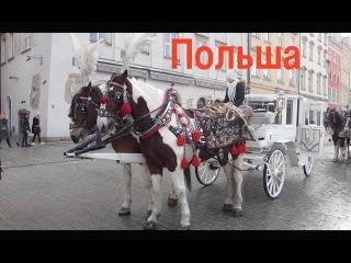 Зимняя Польша. Варшава-Краков-Вроцлав-Познань-Гданьск