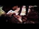 Вей, ветерок! (1973) Полная версия