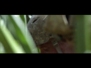 Морпехи 2 (2014) супер фильм_____________________________________________________________________ Ограбление по Итальянски 2003