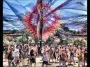 Ace Ventura - Tree of Life mix