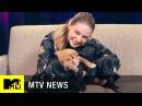 'Supergirl' Star Melissa Benoist Takes Our Super Puppy Challenge MTV News