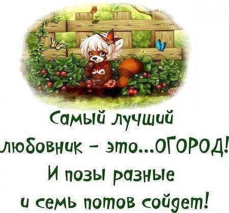 https://pp.vk.me/c622617/v622617187/3021b/YA4vwFuSXac.jpg