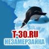 Незамерзайка от производителя t-30.ru