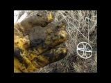 Поиск монет, крестиков с металлоискателем Garrett Ace 250