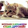 ❤ Друзья, ПИАР, Реклама ❤