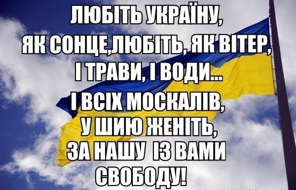 Путин никогда, ни на одной встрече не требовал возврата российских граждан, задержанных в Украине, - Тандит - Цензор.НЕТ 9590