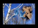За синими туманами - Наталья Бучинская
