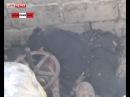 Полиция и МЧС отказались марать руки о мёртвого бомжа