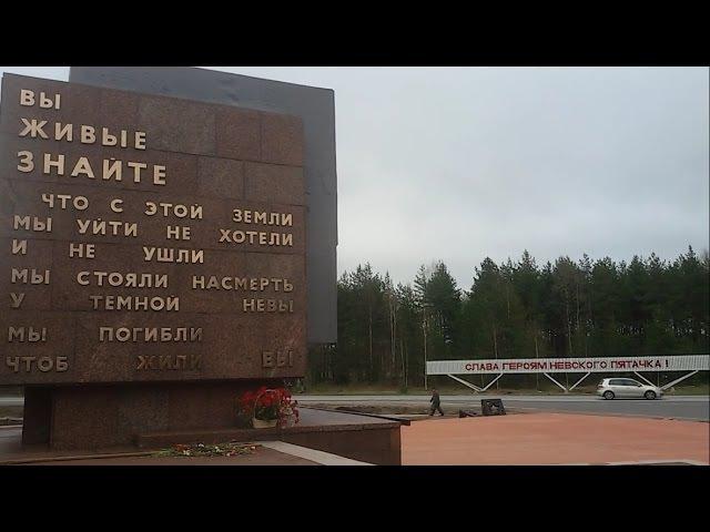 Невский Пятачёк. Вахта памяти 2015. Search for fallen Soviet soldiers