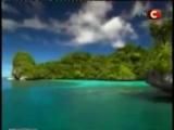 Канал СТБ о Коралловой Воде