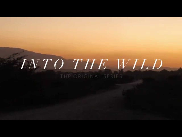 THIRTY SECONDS TO MARS INTO THE WILD OFFICIAL TRAILER