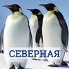 Совет общежития «Северная» (пр. Просвещения, 45)