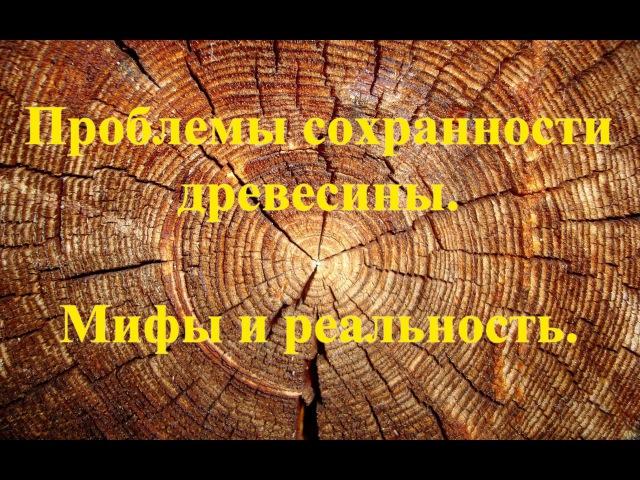 Проблемы сохранения исторической древесины Кистерная М В 2010