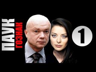 Паук 1 серия (2015) Криминальный сериал