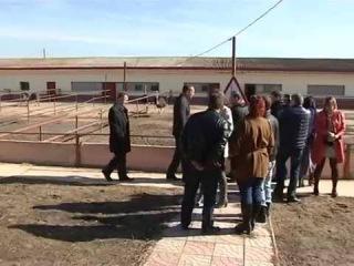Сельскохозяйственный семинар на страусиной ферме д.Ст.Кузьменки