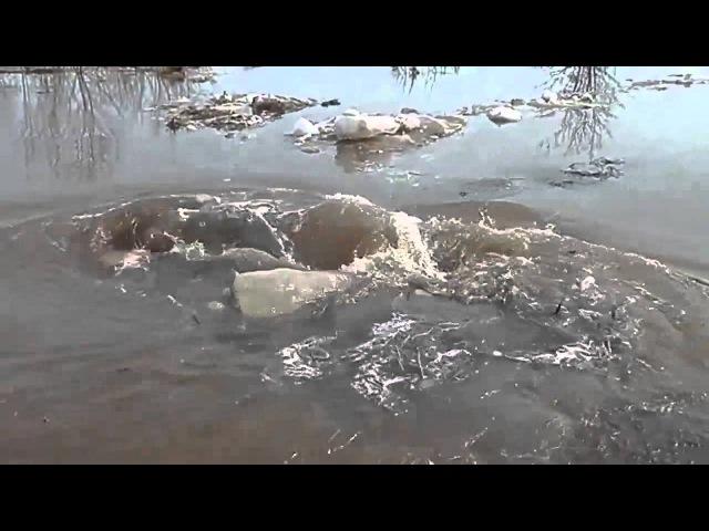 Воронка вблизи берега диаметром в метр поглощает здоровые куски льда и мусора В конце ад