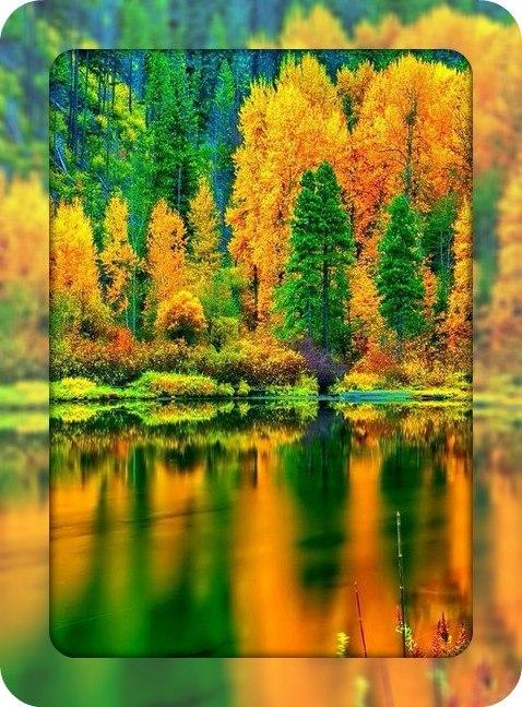 Autumn time ... - Pagina 2 JDF5_fLk-dI