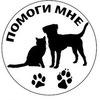 """""""Помоги мне"""" - помощь бездомным животным г.Томск"""