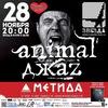 28 ноября 2014 года. ANIMAL ДЖАZ в клубе Звезда