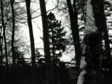 Vinterriket - Gipfelpforte