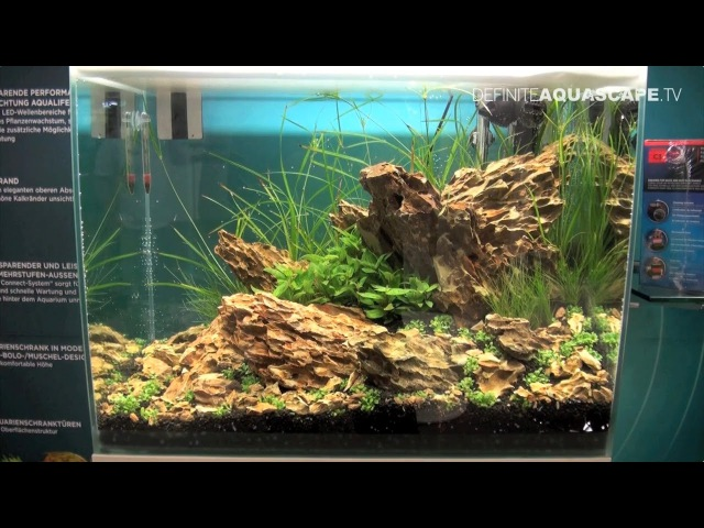 Planted aquariums of Heimtiermesse 2015, Hannover - part 7