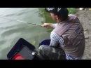 Поплавочная Ловля Уклейки семейная рыбалка Мастер Класс О рыбалке всерьёз видео 189