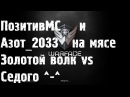 Warface - ПозитивМС и Азот_2033 в мясорубке. Золотой волк vs Седого