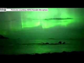 Whales bask under Northern Lights in Norway