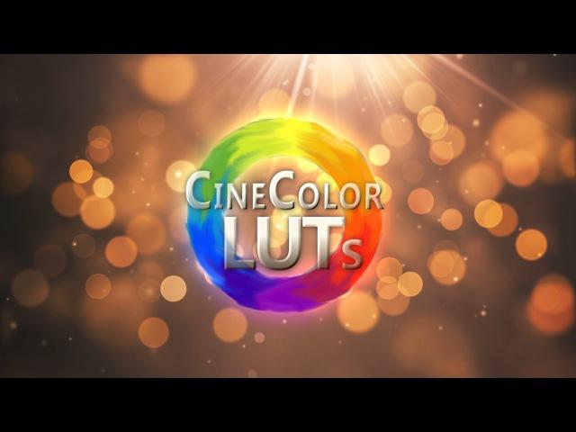 Using LUT's in Adobe Premiere CC 2015