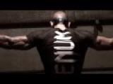 Сильная мотивация к единоборствам MMA !!!Смотрите все!!! Подписка на канал
