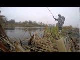 р.Прохладная. Осенняя ловля плотвы на поплавочную снасть.