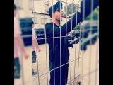 "♦Karolina Murawska♦ on Instagram: ""@adamlambert #adamlambert #king #najlepszy_program #eskatv #mylovelyidol #bestdayofmylife #misiek ? #the_orginal_high #polishfan #glambert…"""