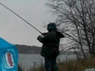 р. Луга рыбалка на фидер в ноябре