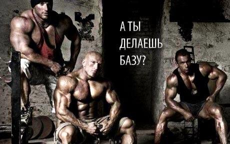 Упражнения: Базовая тренировка мышц для набора мыщечной массы