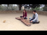 Balafon \ Xylophone Players in Parc Guell, Barcelona
