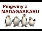 Pingwiny z Madagaskaru - Powrót zemsty doktora Bulgota