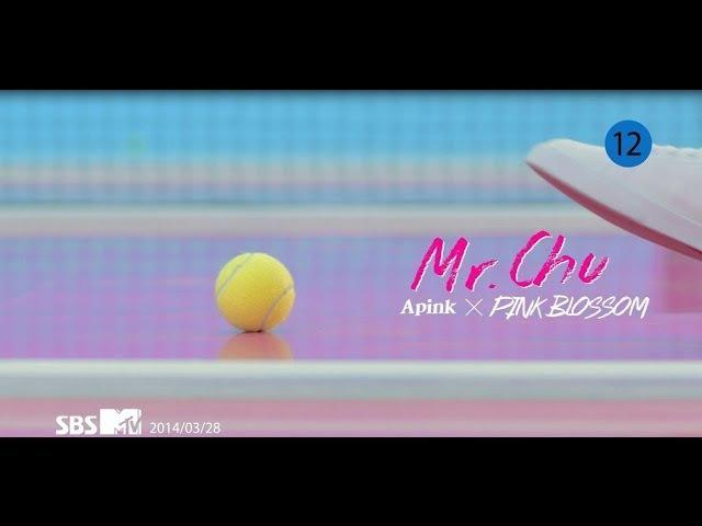 Apink 에이핑크 4TH MINI [Pink Blossom] 'Mr.Chu' (미스터 츄) M/V