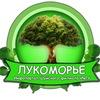«Лукоморье» – Инфопортал Шуйского филиала ИвГУ