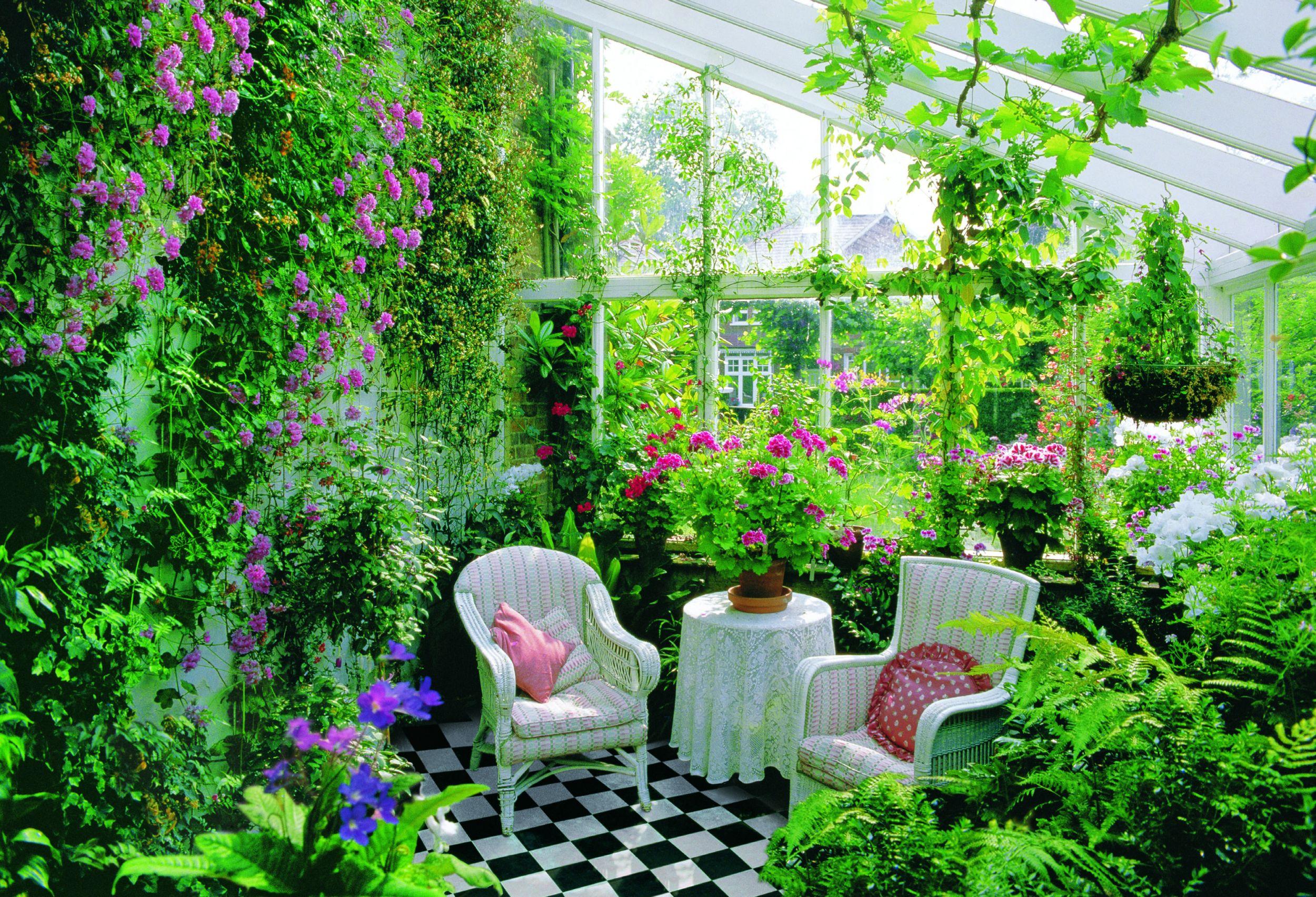 Цветы в доме дизайн