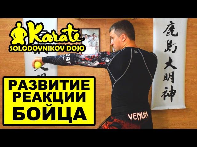 Развитие реакции и ловкости для бойца каратэ   мма   бокс   таэквондо   the reaction of the fighter