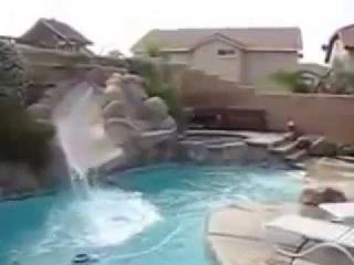 Собака катается с горки в бассейне