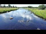 Карелия,посёлок Чёрный Порог,река Онигма