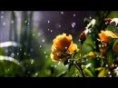 Braiman Shersick - Luminary (Dan Stone Remix)