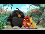 Сердитые Птички - Angry Birds в Кино - Русский HD Трейлер 2016