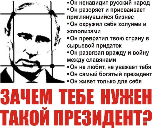 """Оппозиционный пикет под названием """"Итоги года"""" состоялся в Петербурге - Цензор.НЕТ 934"""