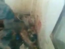 17.07.15. СИРИЯ. СОЛДАТЫ АСАДА САДИСТСКИ УБИВАЮТ ПЛЕННОГО