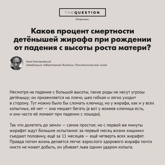 https://pp.vk.me/c622628/v622628306/1836e/zJksZ_HZY5g.jpg