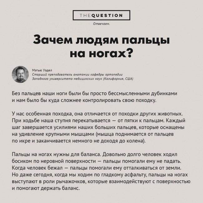 https://pp.vk.me/c622628/v622628306/18376/uxu3ODqasNg.jpg