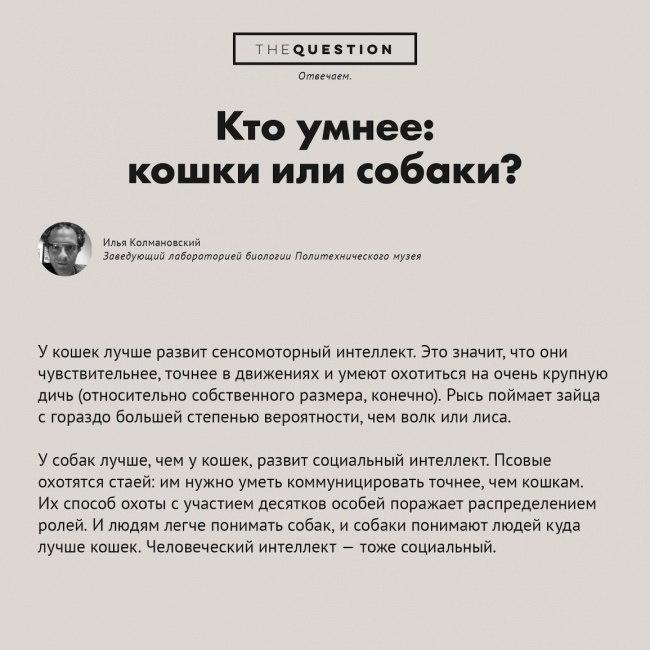 https://pp.vk.me/c622628/v622628306/1838e/E_Q3LJuBwZw.jpg