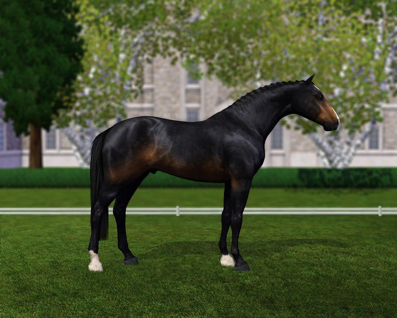 Регистрация лошадей в RHF 2 - Страница 2 BgRUUEhjXwc